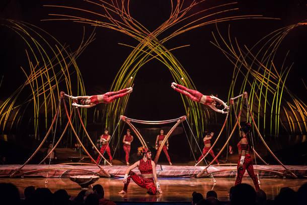 Acrobata do Cirque du Soleil morre após acidente em espetáculo nos EUA